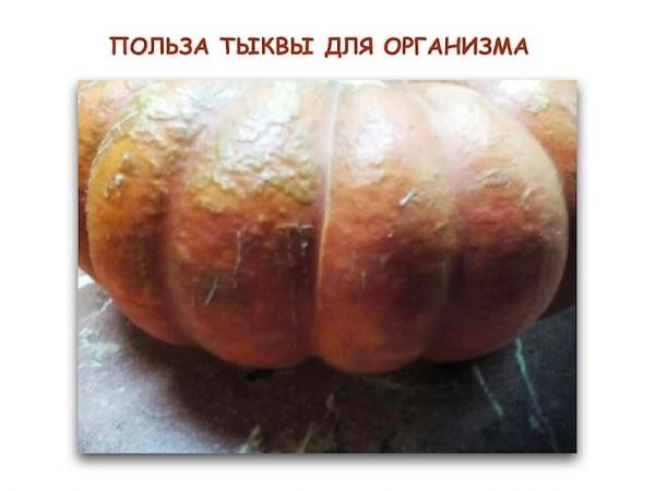 тыква.001-resized