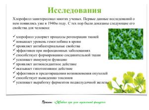 хлорофилл 12